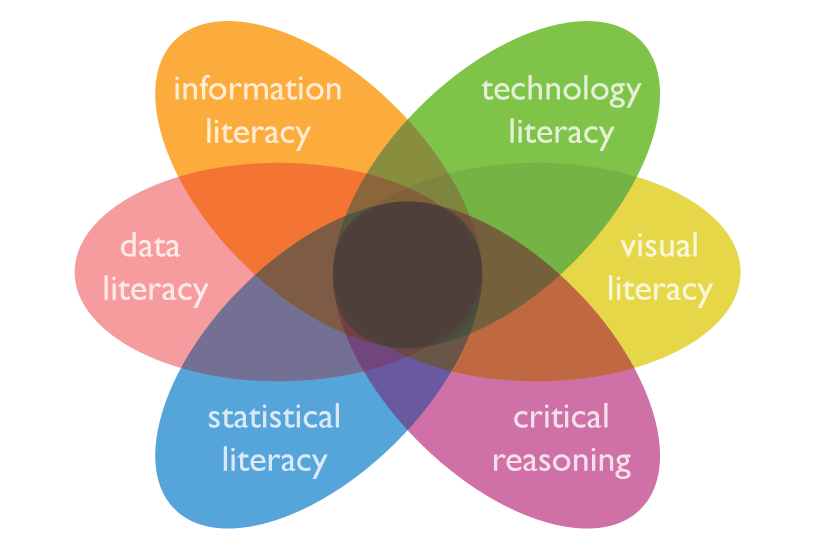 Graphic showing overlapping petals labelled information literacy, data literacy, statistical literacy, critical reasoning, visual literacy, technology literacy.